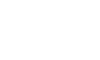 white ace logo