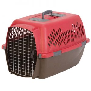pets beds and carriers